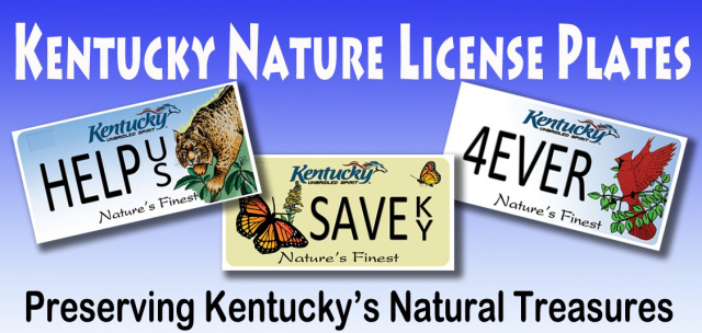 "License Plate Holders >> KENTUCKY ""NATURE'S FINEST"" LICENSE HOLDERS REBUFFED BY GENERAL ASSEMBLY 